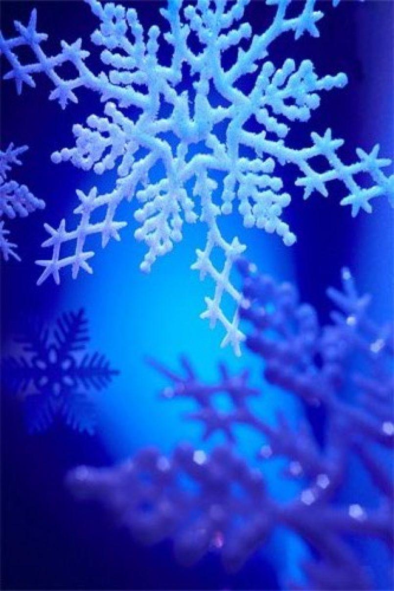 Episode neigeux dans les Landes. Point de situation